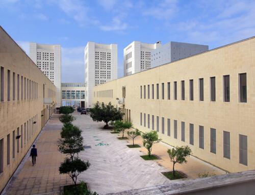 Università Mediterranea